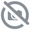 Canne Sunset Sunpulse SW20